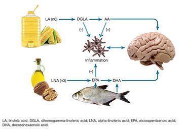 omega_fat